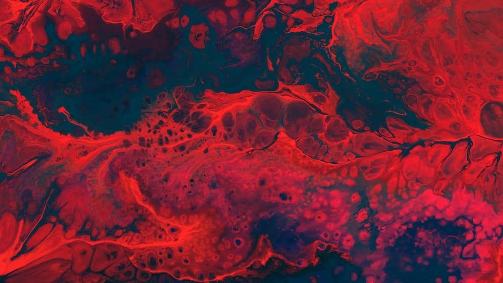 Der Blutcheck – ganz genau wissen, welche Vitamine und Nährstoffe Ihnen fehlen